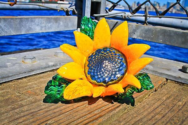 sunflowerdock774.jpg
