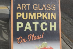 Glass Pumpkin Patch on Now!